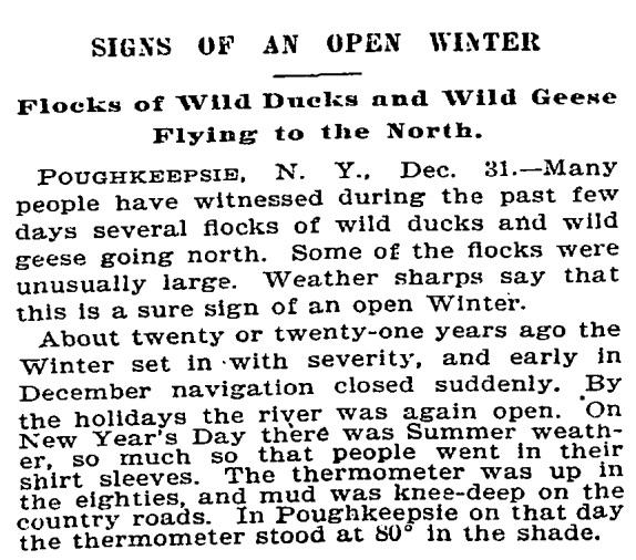 OPen winter NYT, January 1, 1896